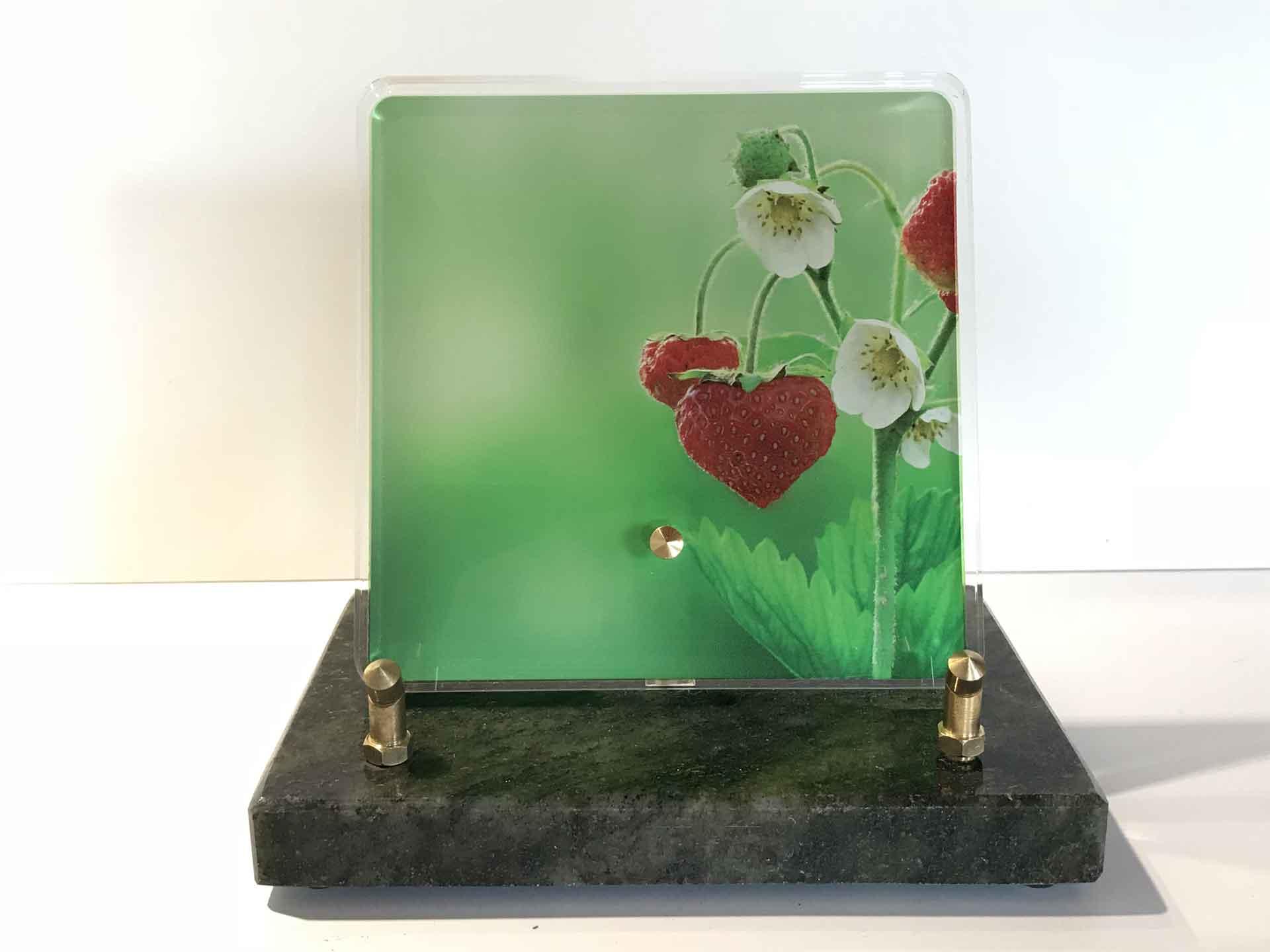Plaque Altuglas - Modèle n°1 décor nature - Fraisier en fleurs et fraises en forme de cœur