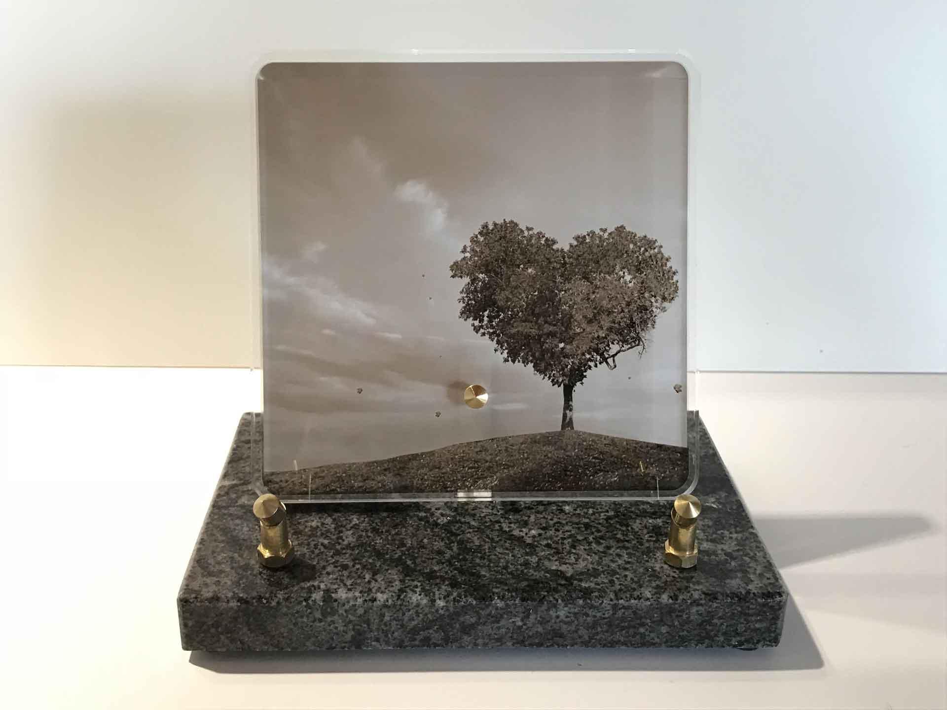 Plaque Altuglas - Modèle n°3 avec arbre en forme de cœur